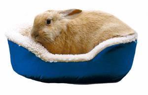 Vlněný pelíšek králík