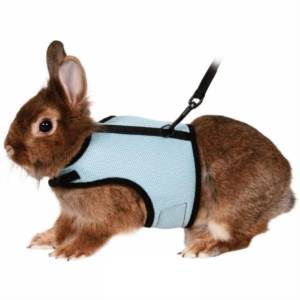 Postroj vesta králík