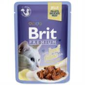 Brit / Brit Premium kapsička Cat Delicate Fillets in Jelly with Beef