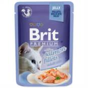 Brit / Brit Premium kapsička Cat Delicate Fillets in Jelly with Salmon