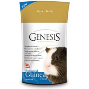 Genesis guinea pig