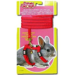 Postroj + vodítko zakrslý králík