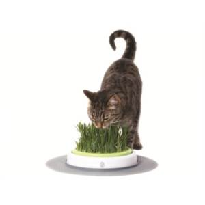 Trávník Cat It Design Senses