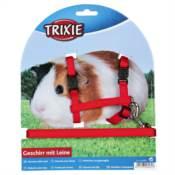Trixie / Postroj morče