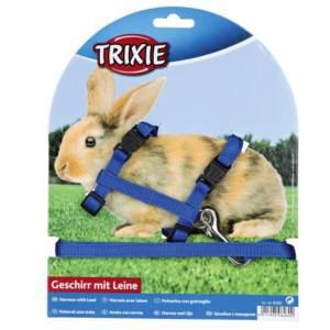 Postroj králík