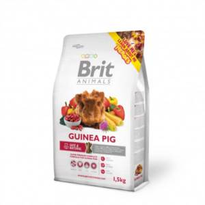 Brit Animals Guinea Pig