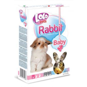 Lolo Pets / BABY králík