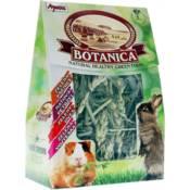 Apetit / Botanica